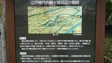 るいーじのだんぼーる★はうす-DSC_0680.JPG