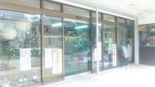 るいーじのだんぼーる★はうす-SBSH1010.JPG