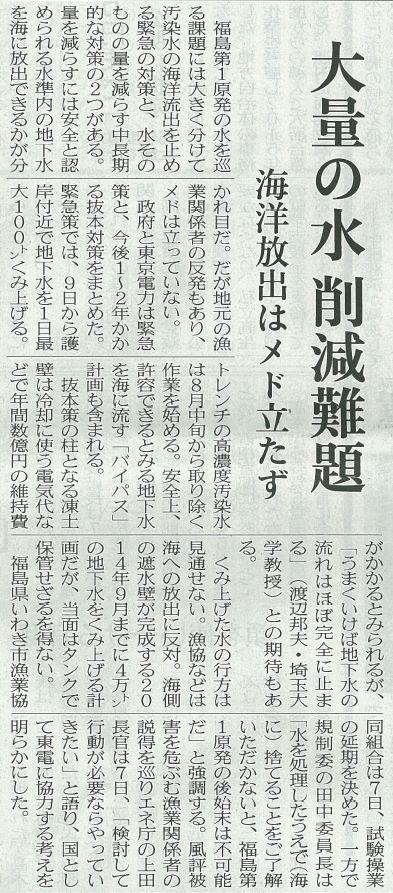 渡邉先生20130808日経新聞