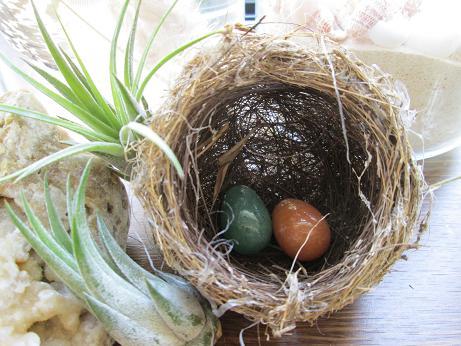 mejiros nest