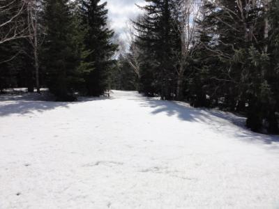 旧津別スキー場 035