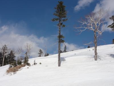 旧津別スキー場 052