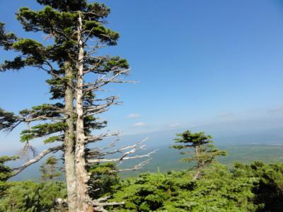 藻琴山・羅臼岳 049