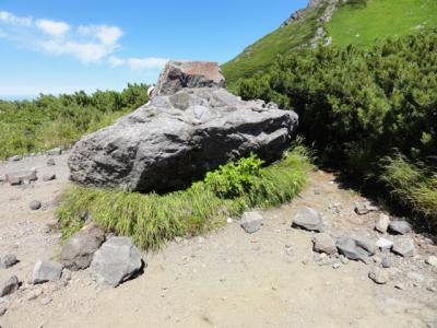 藻琴山・羅臼岳 113