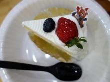 人間用生ケーキ
