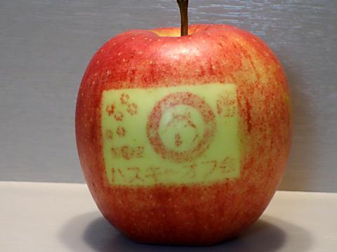 天くん蓮くんのりんご