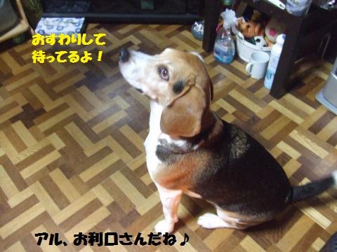005_convert_20131227044515.jpg