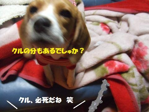 009_convert_20131227044704.jpg