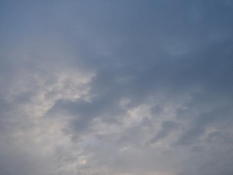13JUN13NSF 002a