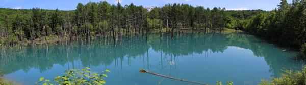 青い池パノラマ1