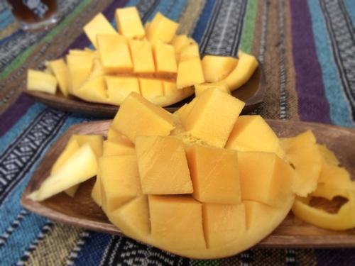 24マンゴー