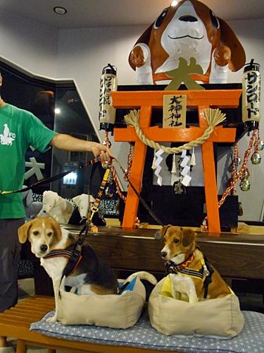 12犬神神社
