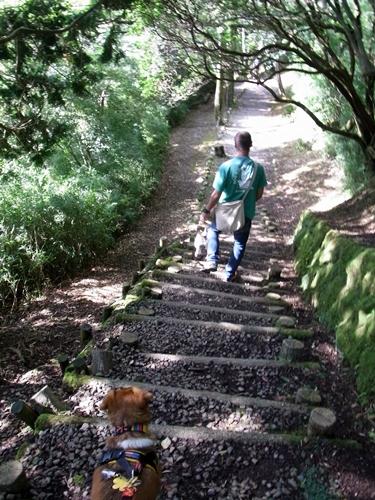 16お散歩