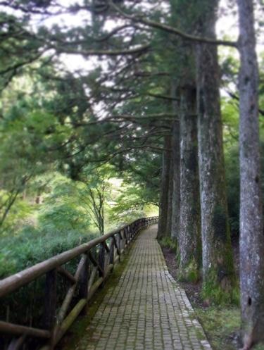 25箱根公園