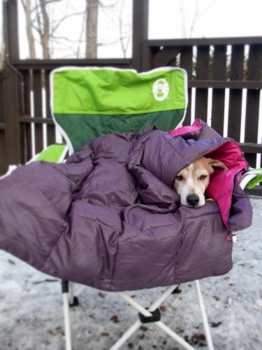 3寒くなっちゃった
