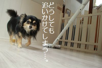 IMG_7338.jpg