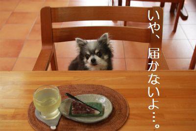 IMG_7360.jpg