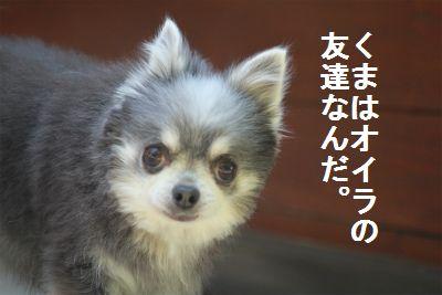 IMG_9712.jpg