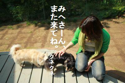 IMG_9895_20130430223049.jpg