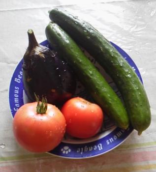20130728夏野菜~♪