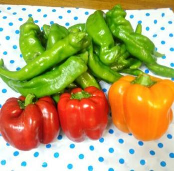 20130731野菜