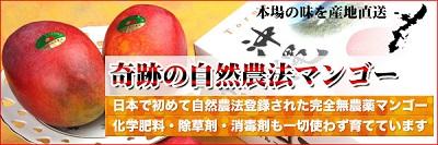 2_20130706053127.jpg