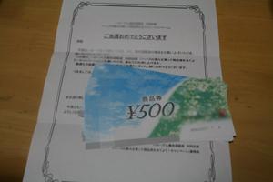 5_20130404064405.jpg