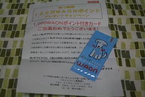 5_20130606054142.jpg