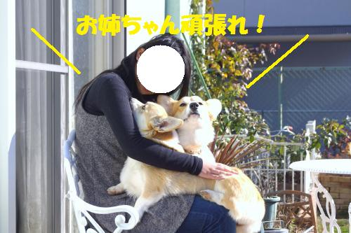 004_convert_20140219235736.jpg