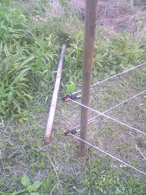 Electric fence 20130816