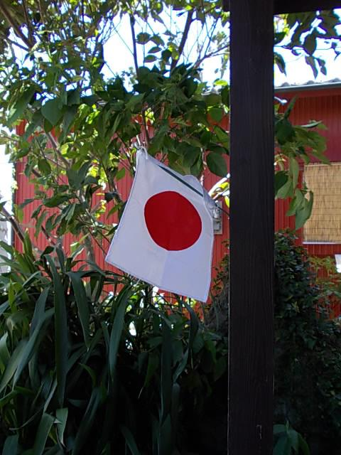Flag 20130916