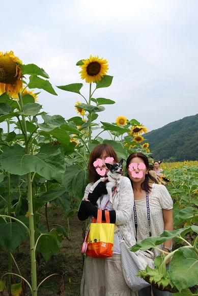 DSC_0036編集ブログ