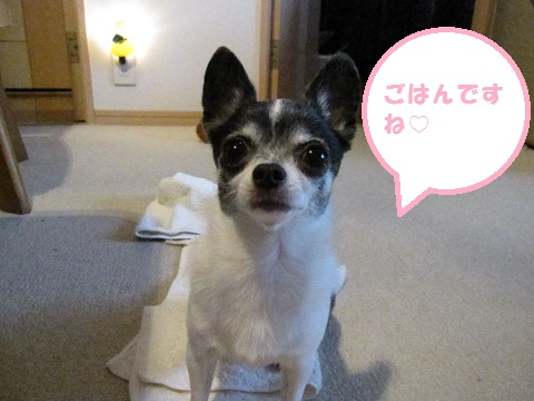 IMG_0400ブログ