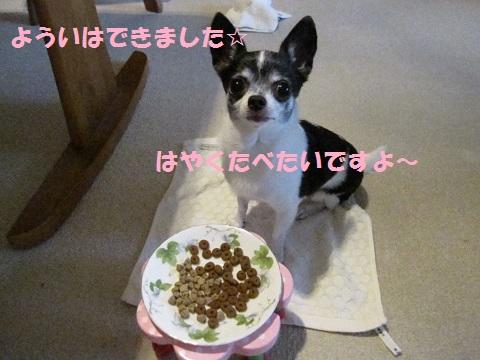 IMG_0411ブログ