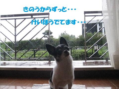 IMG_0760ブログ