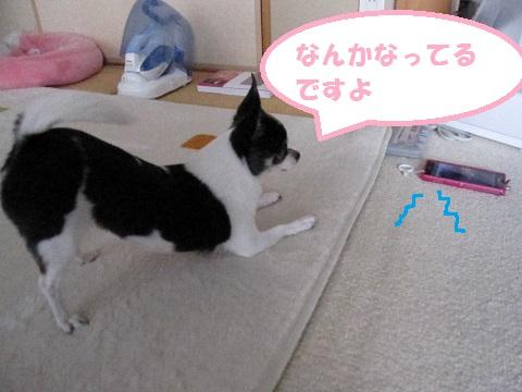 IMG_9005blog.jpg
