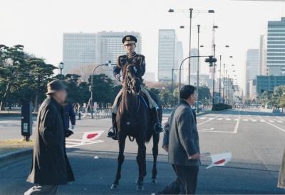 日の丸東京タワー20140102(ぼかし済)