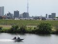 江戸川、ボート、スカイツリー