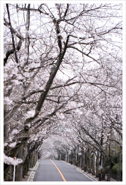 2013-03-31-05.jpg
