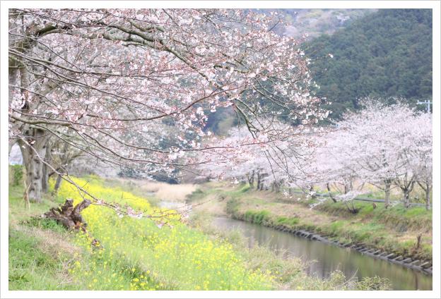 2013-04-06-09.jpg