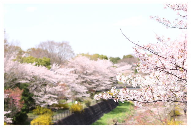 2013-04-17-13.jpg