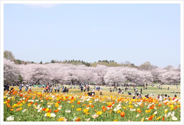 2013-04-19-03.jpg