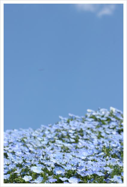 2013-05-12-01.jpg