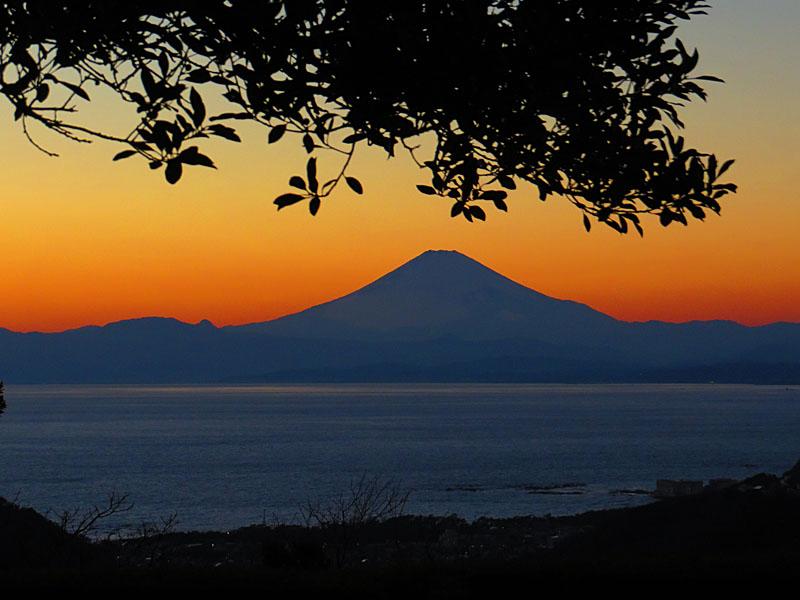 131230犬と見る富士4