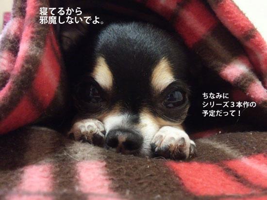 寝顔シリーズ1B