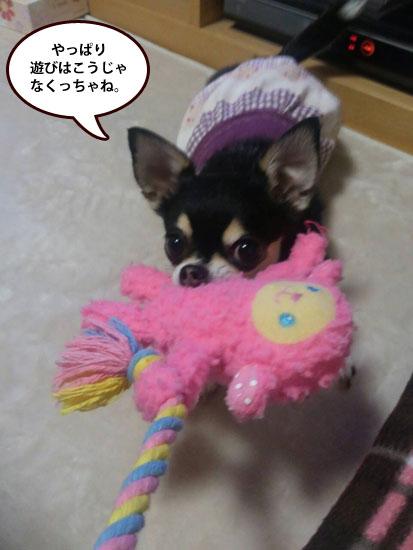 おもちゃ4