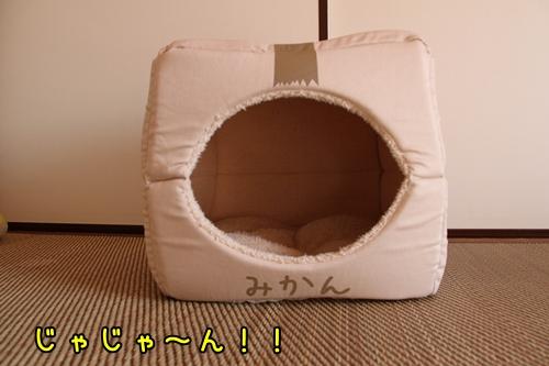 みかん箱3