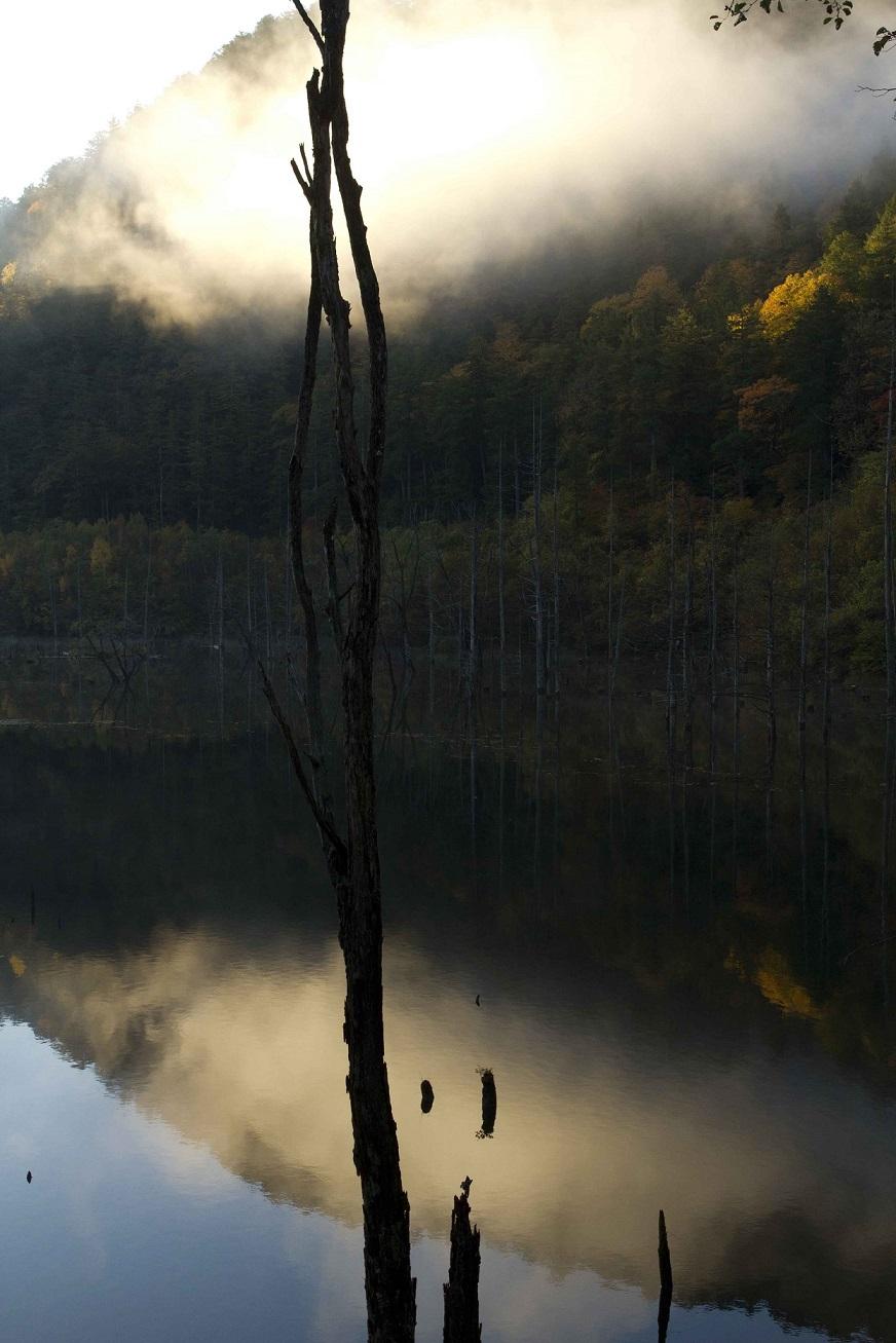 ブログ自然湖22