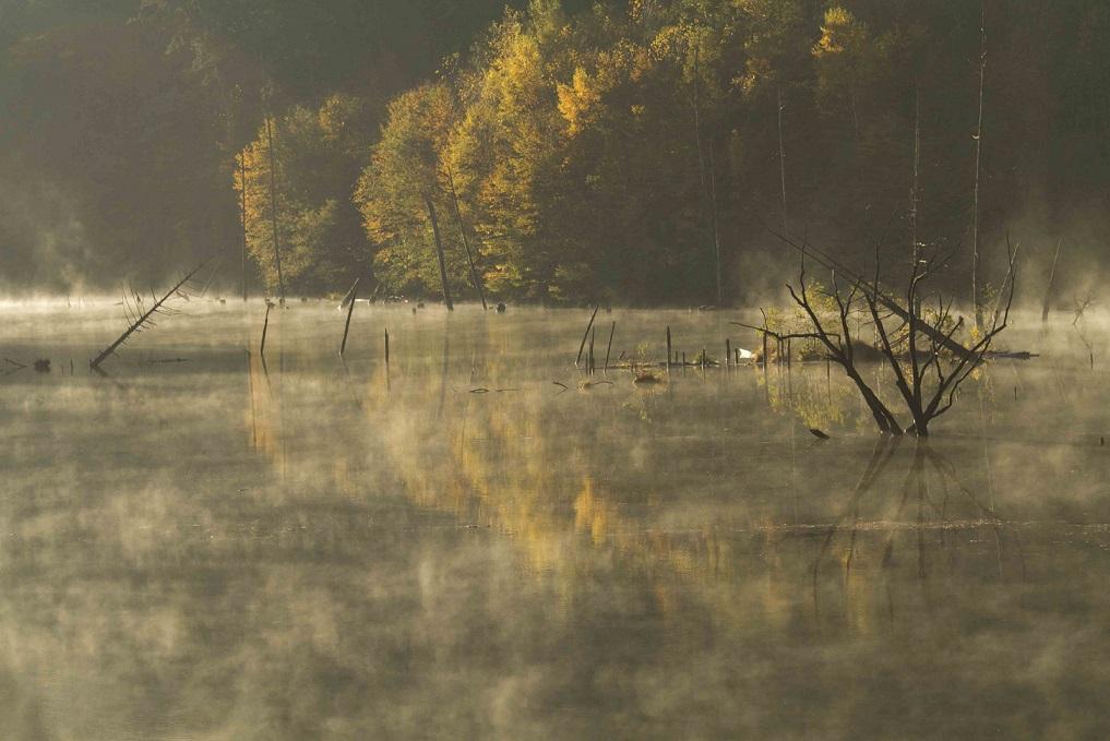 ブログ自然湖31