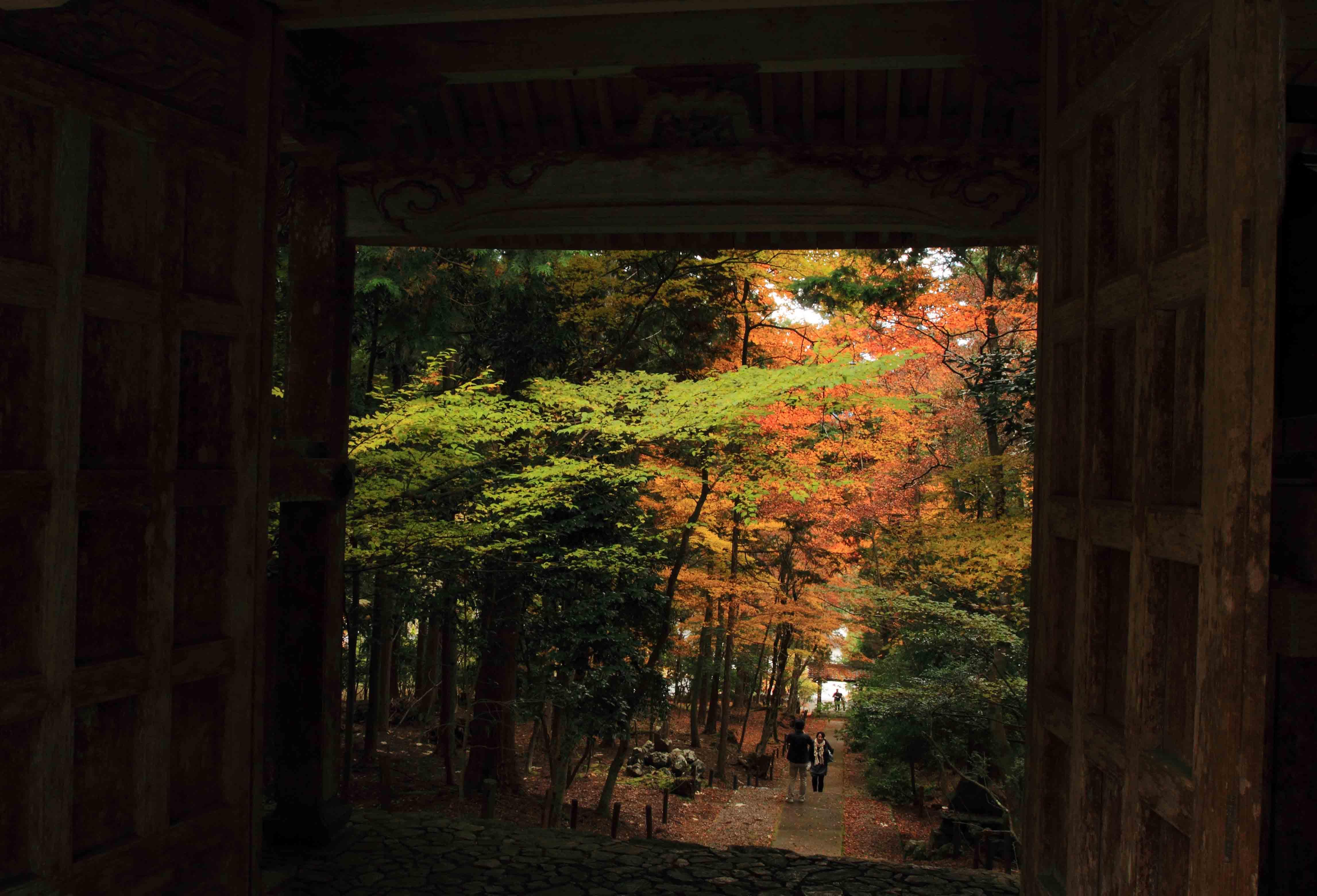 ブログ常照皇寺6